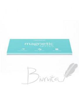 Magnetiniai lapeliai TESLA AMAZING Aqua, 200x100 mm, 100 lapelių