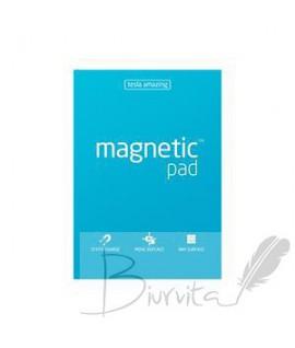 Magnetiniai lapeliai TESLA AMAZING A3 melsvi, 50lapų