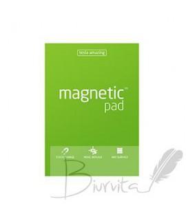 Magnetiniai lapeliai TESLA AMAZING A4 žali, 50 lapų
