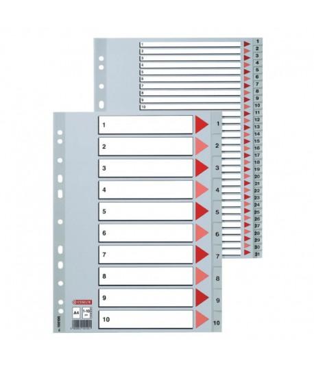 Skirtukai segtuvams ESSELTE , A4, plastikiniai, 1-12, 100106