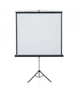 Ekranas su stovu 150 x 150 cm.