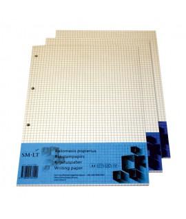 Popierius langeliais , A4, 4 skylės 100 lapų