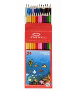 Spalvoti pieštukai CONCORDE 24 vnt.
