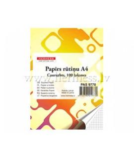 Rašomasis popierius HERMESS, A4, 100 lapų, langeliais, 4 skylės