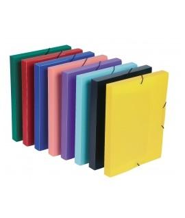 Plastikinis dėklas- dėžutė dokumentams VIQUEL Standart A4, su gumelėmis