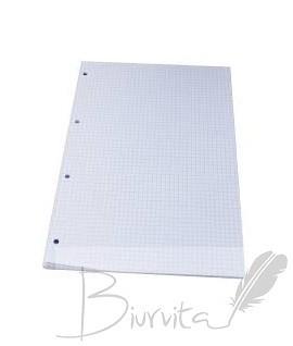 Papildomas popierius A4, 50 lapų, langeliais, 4 skylės