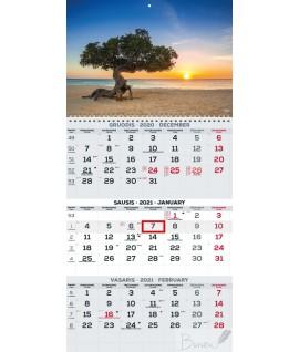 Pakabinamas kalendorius TIMER TRIO, 3 dalių