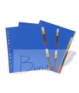 Skiriamieji lapai College, A4, 1-12, plastikiniai, numeruoti, įvairių spalvų